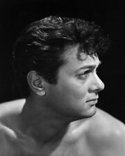 The Rat Race Tony Curtis Beefcake Bare Chested Hunky Portrait Poster or Photo