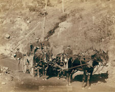 US Paymaster wagon on road from Deadwood to Fort Meade South Dakota Photo Print