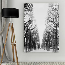 French Avenue Canvas Wall Art