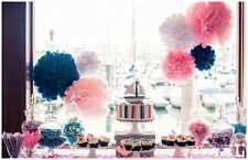 "15 Pcs 10"" Tissue Paper Pom Poms Flowers Balls Wedding Party Decoration Supplies"