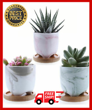 Ceramic Succulent Plant Pot DILIGENT Cactus Plant Bonsai Pot With Bamboo Trays