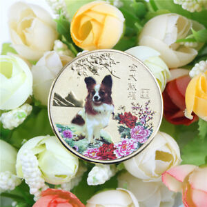 1PC YEAR OF THE DOG GOLD CHINESE ZODIAC 2018 SOUVENIR COIN TOURISM GIFT EER