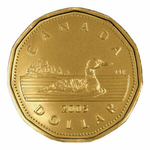 2005 CANADIAN $1 ONE DOLLAR COMMON LOONIE COIN 2005
