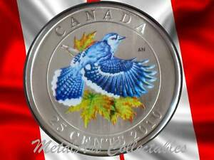 Click now to see the BUY IT NOW Price! 2010 BLUE JAY   BIRDS OF CANADA SERIES   BEAUTIFUL COLORED 25 CENT COIN