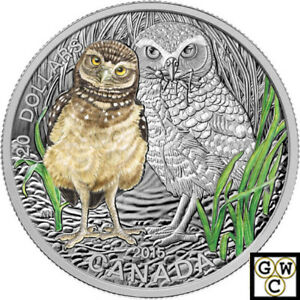 Click now to see the BUY IT NOW Price! 2015 BURROWING OWL BABY ANIMALS COLORIZED PRF $20 SILVER 1OZ .9999 FINE 15286 NT