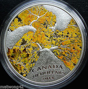 Click now to see the BUY IT NOW Price!   CANADA $20 .999 FINE SILVER 1 OZ. COIN   MAPLE  AUTUMN ALLURE CANOPY 2014