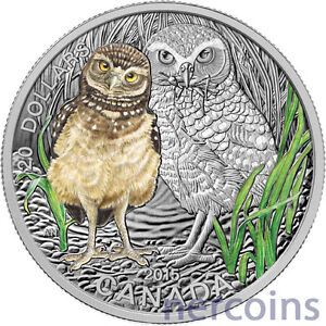 Click now to see the BUY IT NOW Price! CANADA 2015 BABY ANIMALS BURROWING OWL $20 PURE SILVER PROOF COIN PERFECT