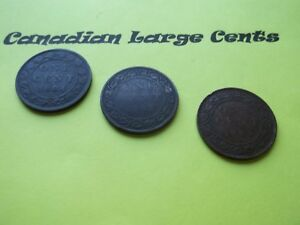 LOT OF 3 CANADIAN LARGE CENT   1884 1901 1903    CLC9