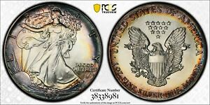 1987   PCGS MS66   SILVER EAGLE DOLLAR $1   GORGEOUS TONING WITH TRUVIEW