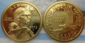 2003 S CAMEO PROOF NATIVE AMERICAN DOLLAR   ONE LIKE THOSE SHOWN
