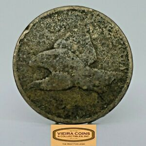 NO DATE FLYING EAGLE ONE CENT    C21452NB