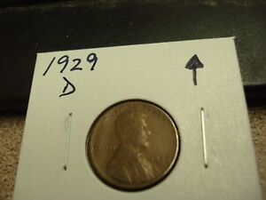 1929 D   AMERICAN PENNY   USA ONE CENT