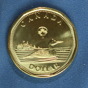 CANADA 2013 LOONIE  ONE DOLLAR  FROM A MINT ROLL