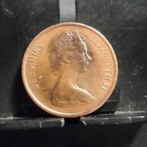 CIRCULATED 1981 1 CENT BERMUDA COIN  10118 R1  FREE DOMESTIC SHIPPING