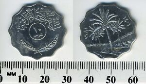 IRAQ 1981  1401    10 FILS STAINLESS STEEL COIN   PALM TREES DIVIDE DATES