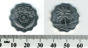 IRAQ 1981  1401    5 FILS STAINLESS STEEL COIN   PALM TREES DIVIDE DATES