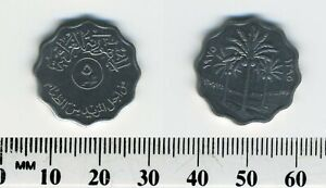 IRAQ 1975  1395    5 FILS STAINLESS STEEL COIN   PALM TREES DIVIDE DATES