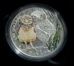 Click now to see the BUY IT NOW Price! BABY BURROWING OWL   2015 $20 PURE SILVER COIN & STAMP SET