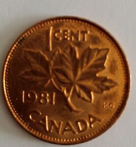 CANADA 1 CENT PENNY  1981 PENNY NICE LUSTRE