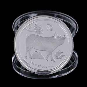 YEAR OF THE PIG COMMEMORATIVE COIN CHINESE ZODIAC COLLECTION COIN LUCKY GI BX