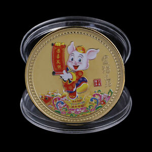 YEAR OF THE PIG SOUVENIR COIN CHINESE ZODIAC COLLECTION COIN LUCKY CHARACTER BX