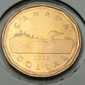 2009 CANADA 1 ONE DOLLAR LOONIE UNCIRCULATED CANADIAN COIN NOT IN CASE C744