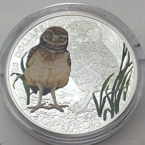 Click now to see the BUY IT NOW Price! 2015 PROOF 20 DOLLAR FINE SILVER BABY BURROWING OWL UNCIRCULATED COIN F790