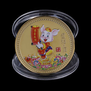 YEAR OF THE PIG SOUVENIR COIN CHINESE ZODIAC COLLECTION COIN LUCKY CHARACTE TLT