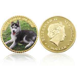 GOLD PLATED PET DOG METAL COIN CHALLENGE COIN COLLECTIBLE COMMEMORATIVE COIN