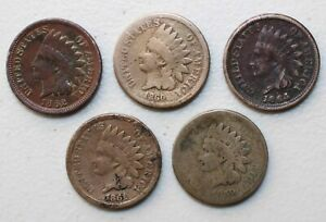 5 COIN LOT 1859 1864 INDIAN HEAD PENNIES 1C US COPPER NICKEL COINS AVERAGE CIRC