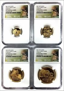 Click now to see the BUY IT NOW Price! 2016 SOUTH AFRICA GOLD   BIG CATS SERIES   CHEETAH   PF70 UC   NGC 4 COIN SET
