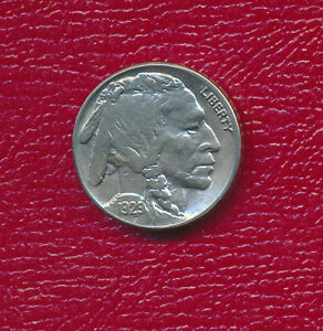 1929 S BUFFALO NICKEL   FULL HORN