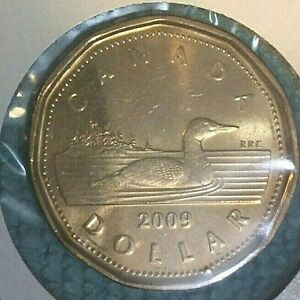 2009 1 $ CANADA DOLLAR SUPER NICE UNC COIN MINT CONDITION