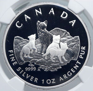Click now to see the BUY IT NOW Price! 2004 CANADA UK QUEEN ELIZABETH II ARCTIC FOX OLD SILVER PROOF $5 COIN NGC I89239