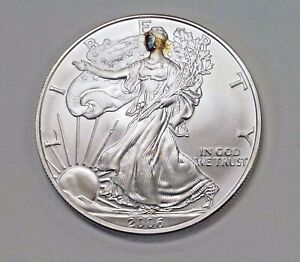 2006 AMERICAN SILVER EAGLE UNUSUAL BLUE BROWN  FACE MASK NATURAL TONING
