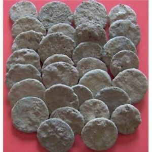UNCLEANED AND UNGRADED CRUSTY ROMAN COINS  PER COIN BUYING/BIDDING