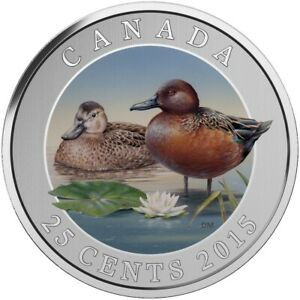 CINNAMON TEAL   2015 CANADA 25 CENT COLOURED COIN