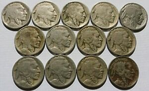 13 BUFFALO NICKELS 1915/18/20 S/21/24 D/31 S 5C COINS