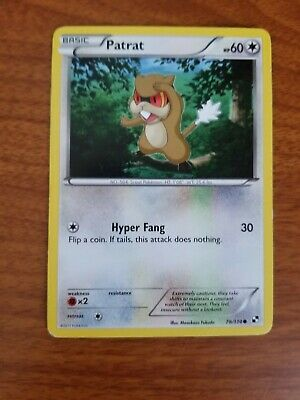 Patrat 78/114 Base  Common Black & White, Mint/NM  Pokemon Trading Card