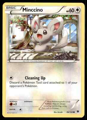 Pokemon Xy Fates Collide Minccino #86/124