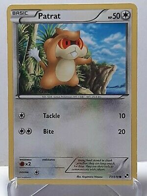 Patrat 77/114 Pokemon Black & White Common Colorless Damaged Used See Pictures