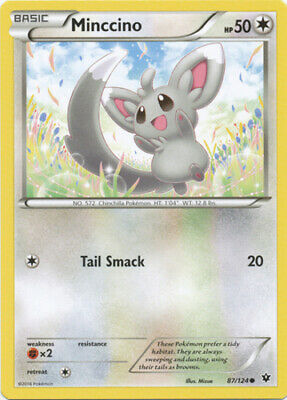 1x - Minccino - 87/124 - Common NM Pokemon XY Fates Collide