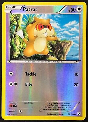 Pokemon Card Patrat Black & White 77/114 NEAR MINT Reverse Holo Common TCG!!!!!!