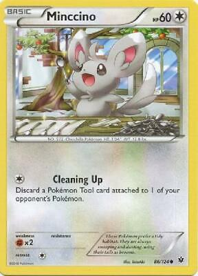 9x Minccino - 86/124 - Common NM Pokemon XY Fates Collide