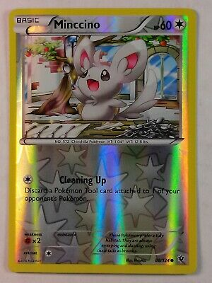 Minccino 86/124   X&Y: Fates Collide   Reverse Holo   NM/Mint  Pokemon