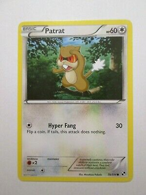 061PK078 - Patrat - 78/114- Black & White - Common- Pokemon Card - NM