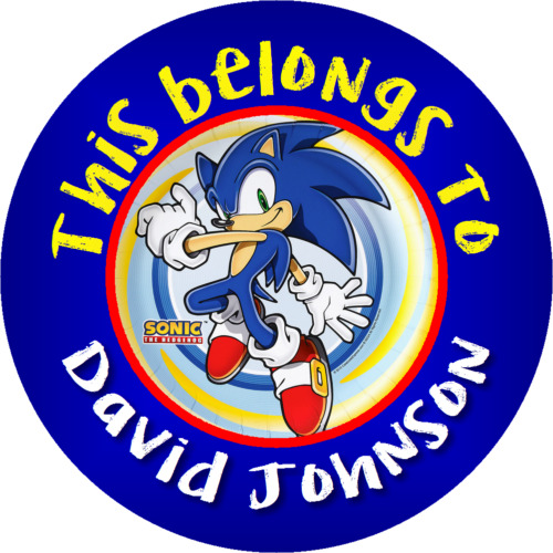 CUSTOM SONIC THE HEDGEHOG Property Stickers school books NAME tags LABELS ROUND