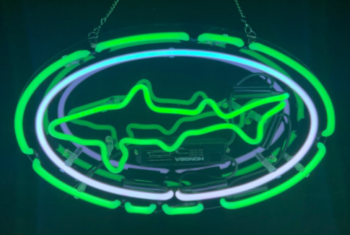 Custom for Dogfish Head Neon Signs Real Glass Handmade Neon Sign Shipping in US