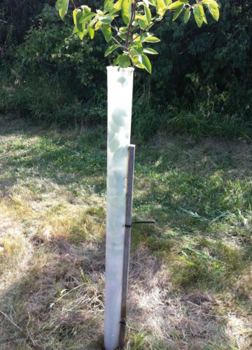 MIRACLE TUBE TREE SHELTERS (5)