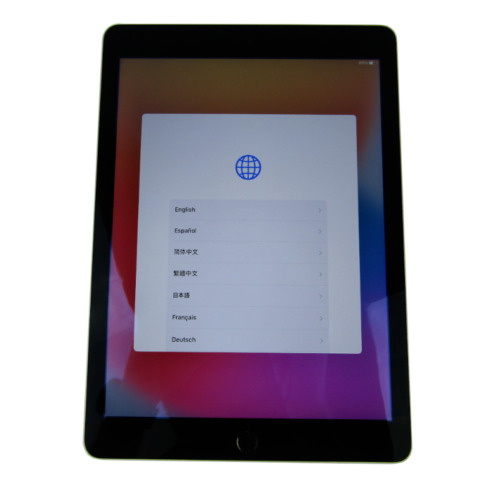 Apple iPad Air 2- A1566- 16GB, Wi-Fi Only, 9.7in - Space Gray